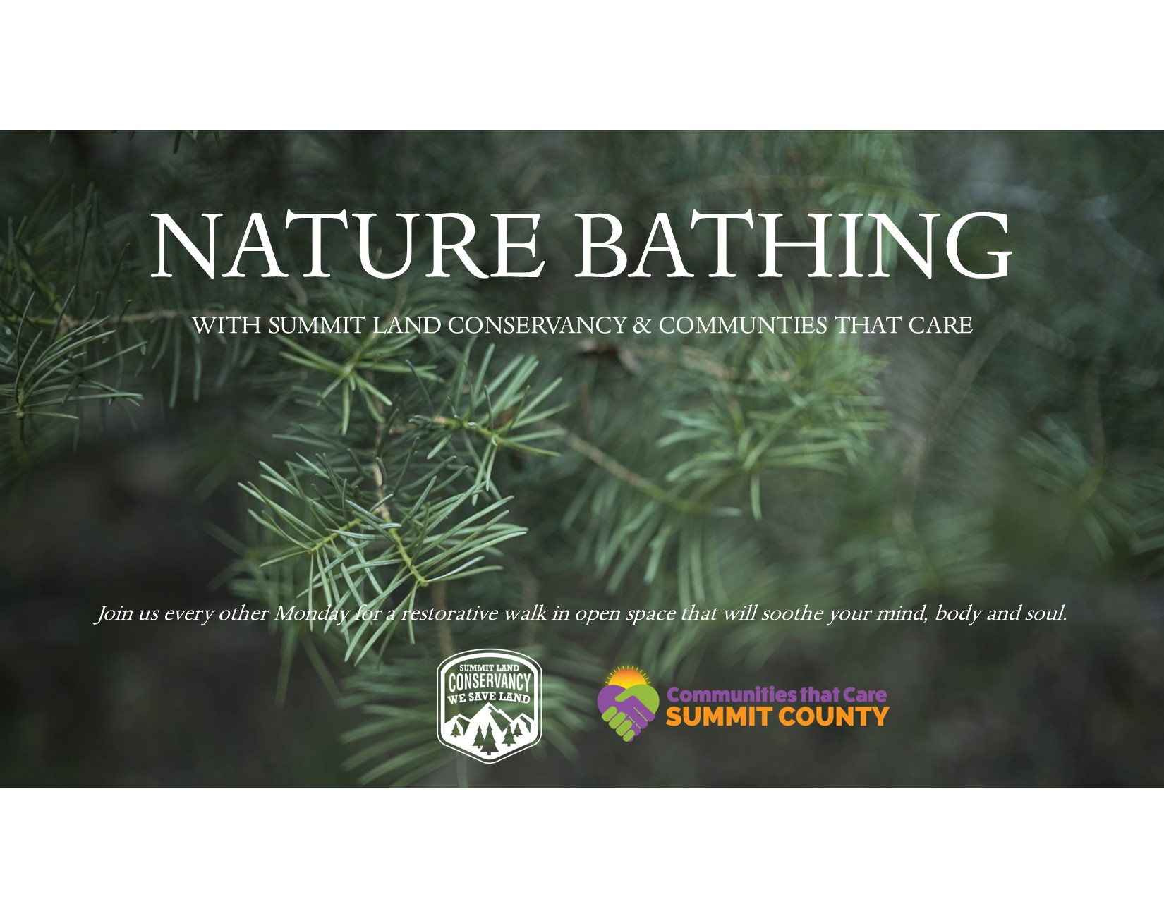 Nature Bathing at Gambel Oak